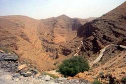 wüste gobi beste reisezeit